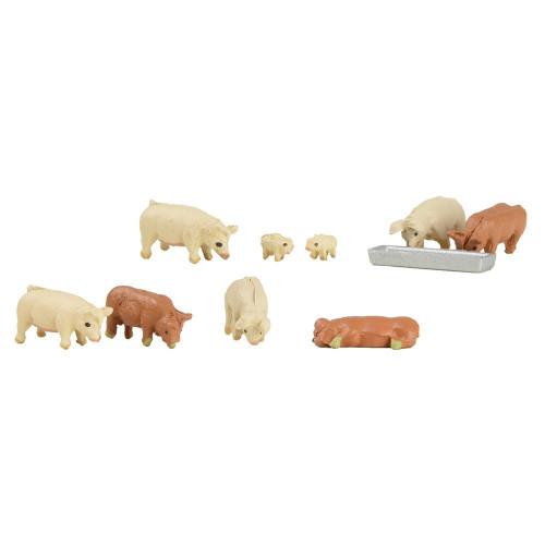 379-342 Pigs