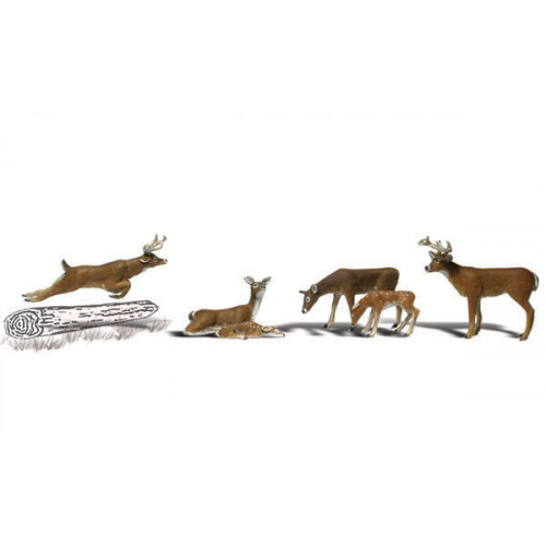 A1884 Deer