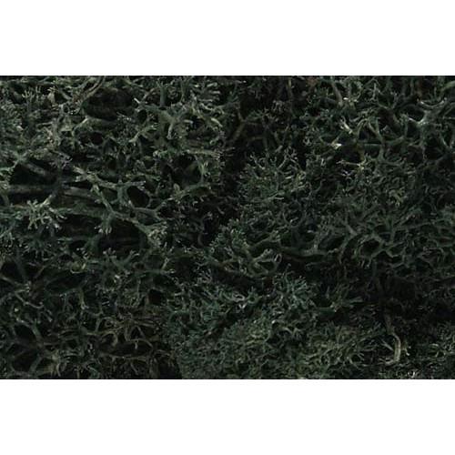 WL164 Dark Green Lichen