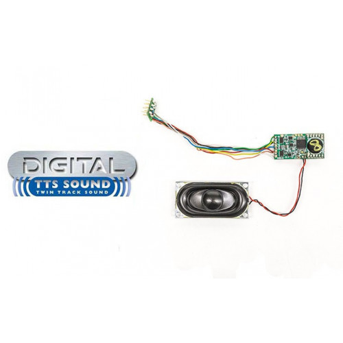 R8106 TTS Sound Decoder - A1 & A3 Class